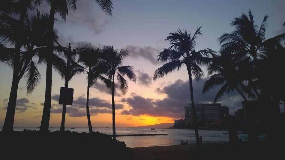 Beautiful stock photos of hawaii, Beach, Beauty In Nature, Coastline, Honolulu
