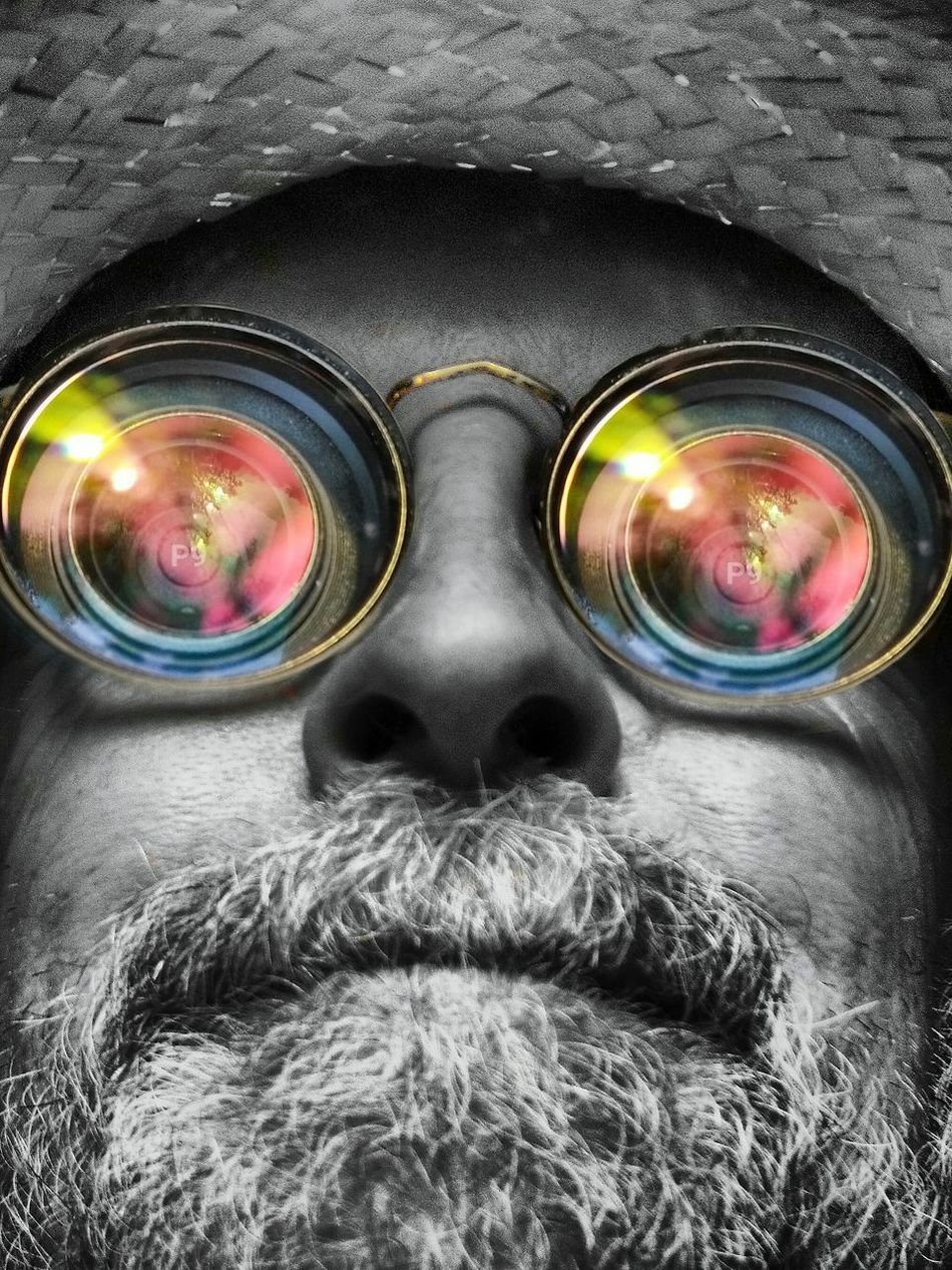 Look into my iris. OO Mission Lenses Face Wearing Glasses Robin Fifield - Photos Check This Out Cheese! That's Me Colour Pop Sunset_collection Reflections Check This Out! Selfie ✌ Lenseffect Spectacles MySpecs Eyewear Design Eyewear