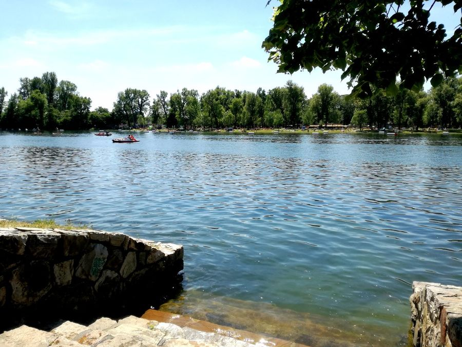 Water Tree Nautical Vessel Lake Outdoors Day Nature People One Person Summer Vibes Summerfeeling Summer In The City Travel Destinations Vienna Austria Riverside Photography River View Blue Danube Summer Views Beauty In Nature Beach Nature Sky