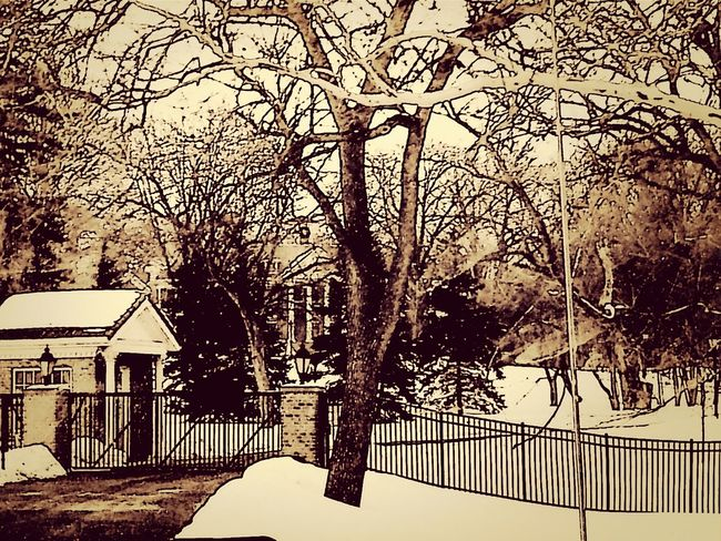 Eye Em Snowscapes Eyeem Snow Winter 2013-2014♥ Eyeem Shot As Is