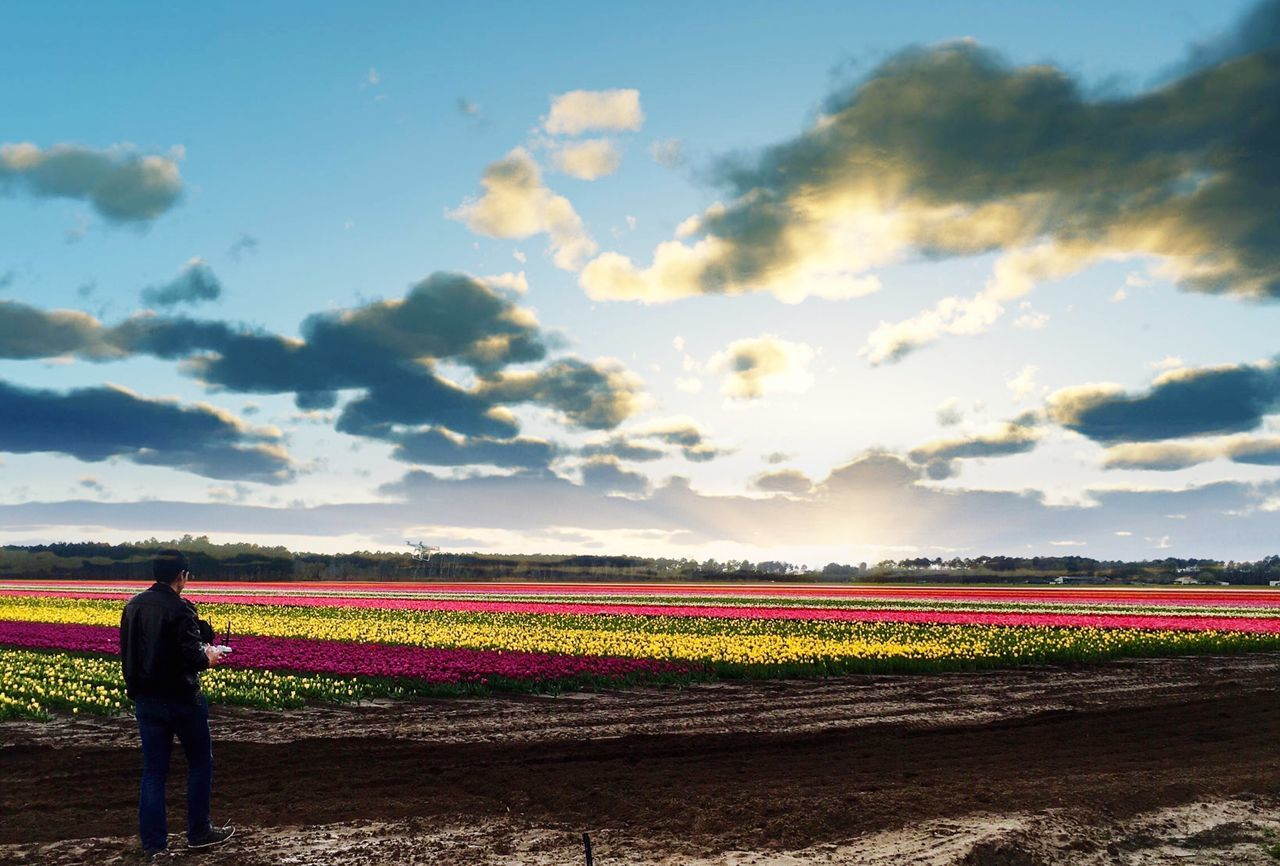 The color maker Drone  Dronephotography Flower Rural Scene Sky Agriculture Field Cloud - Sky Outdoors Landscape Women Nature Scenics Day Beauty In Nature Cultures One Person Freshness People Adult Adults Only Picooftheday EyeEmBestPics EyeEm Best Edits Photooftheday