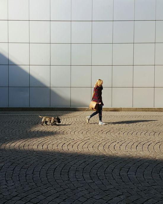 Dog Love Dog Dogs Of EyeEm Dogoftheday Peoplescreatives People Walking  Peoplewalkingpastwalls TheWeekOnEyeEM Shadows & Lights Shadowplay Light And Shadow