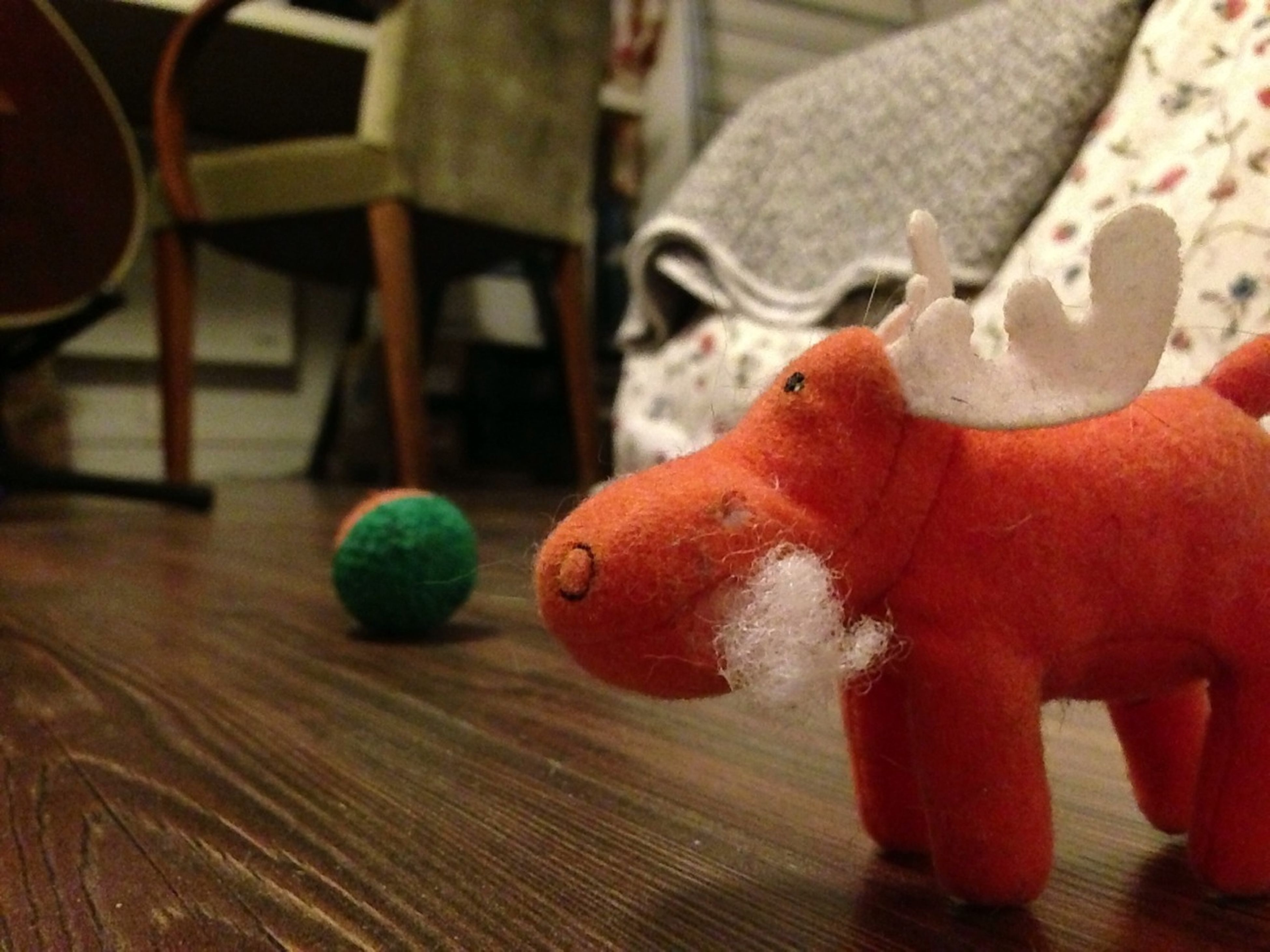 The Cat's Toys