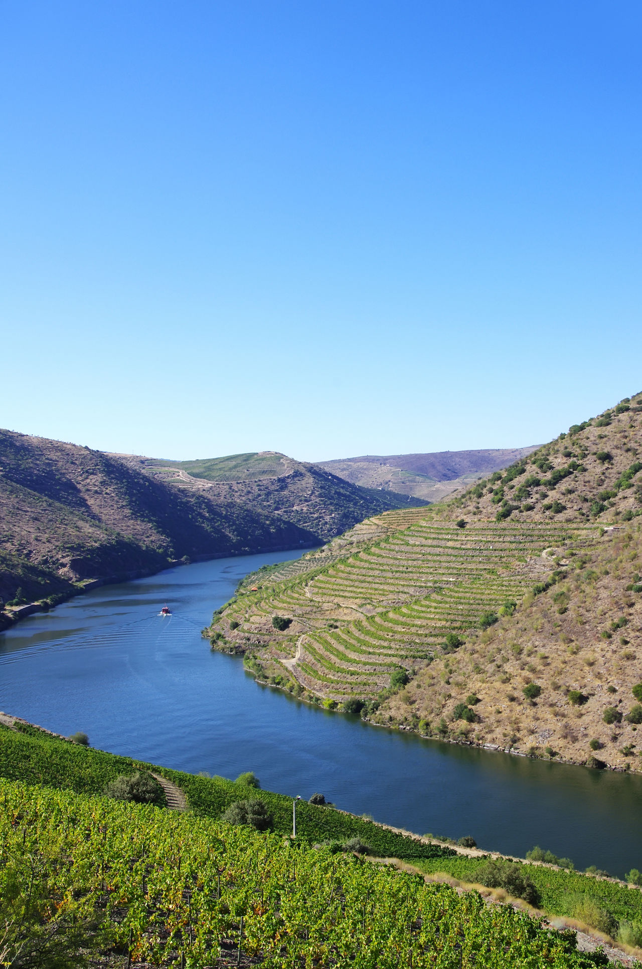 landscape of Douro river, Portugal Blue Clear Sky Douro  Douro River Douro River Portugal Douro Valley Landscape Mountain Nature Panoramic Travel Destinations Water