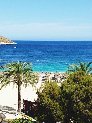 Current mood 🐠🐟 Magaluf Beach Mood Sea Ocean SPAIN Relaxing Mallorca