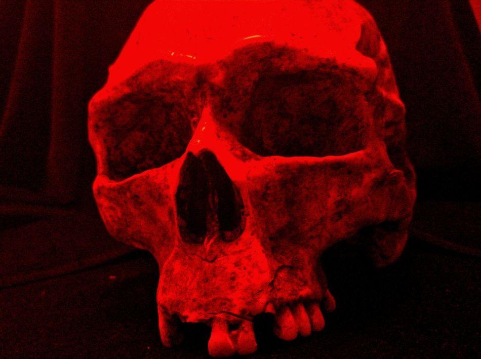Red Skull RedSkull Cuartomilenio Exposicion Madrid Teatro Calderon LG G4 Notes From The Underground Weird Taking Photos