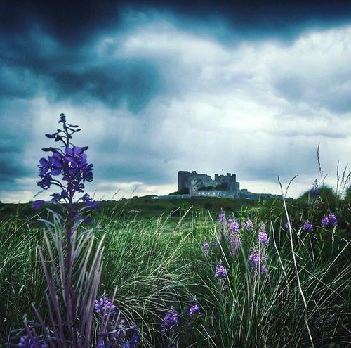 An old, unused pic of Bamburghcastle .. Northumberland Fiftyshades_of_history CapturingBritain Ig_britishisles