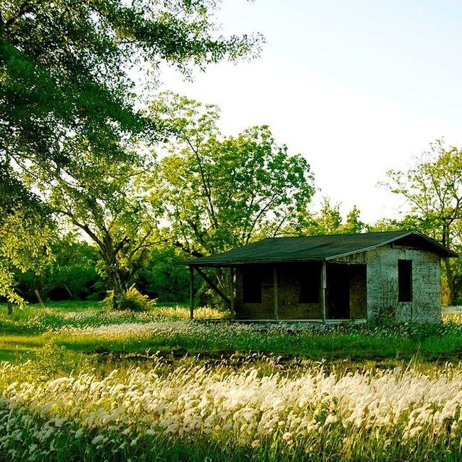 Trb_country Trb_members1 Rustic_wonders Rural_love Trb_love_shack_baby Rural_love_6