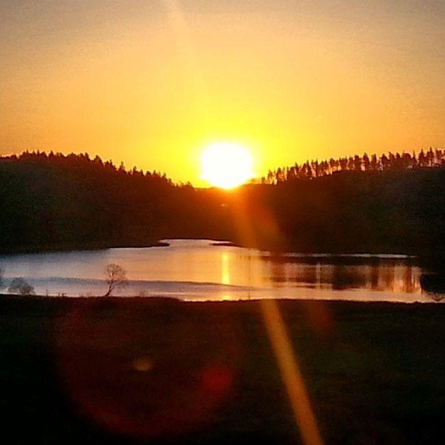 My daily morning wiew Sweden Yxnerum  östergötland Sunrise morninglight earlymorning atumn atumnlight november gobo beautifulsweden ninacombat lake