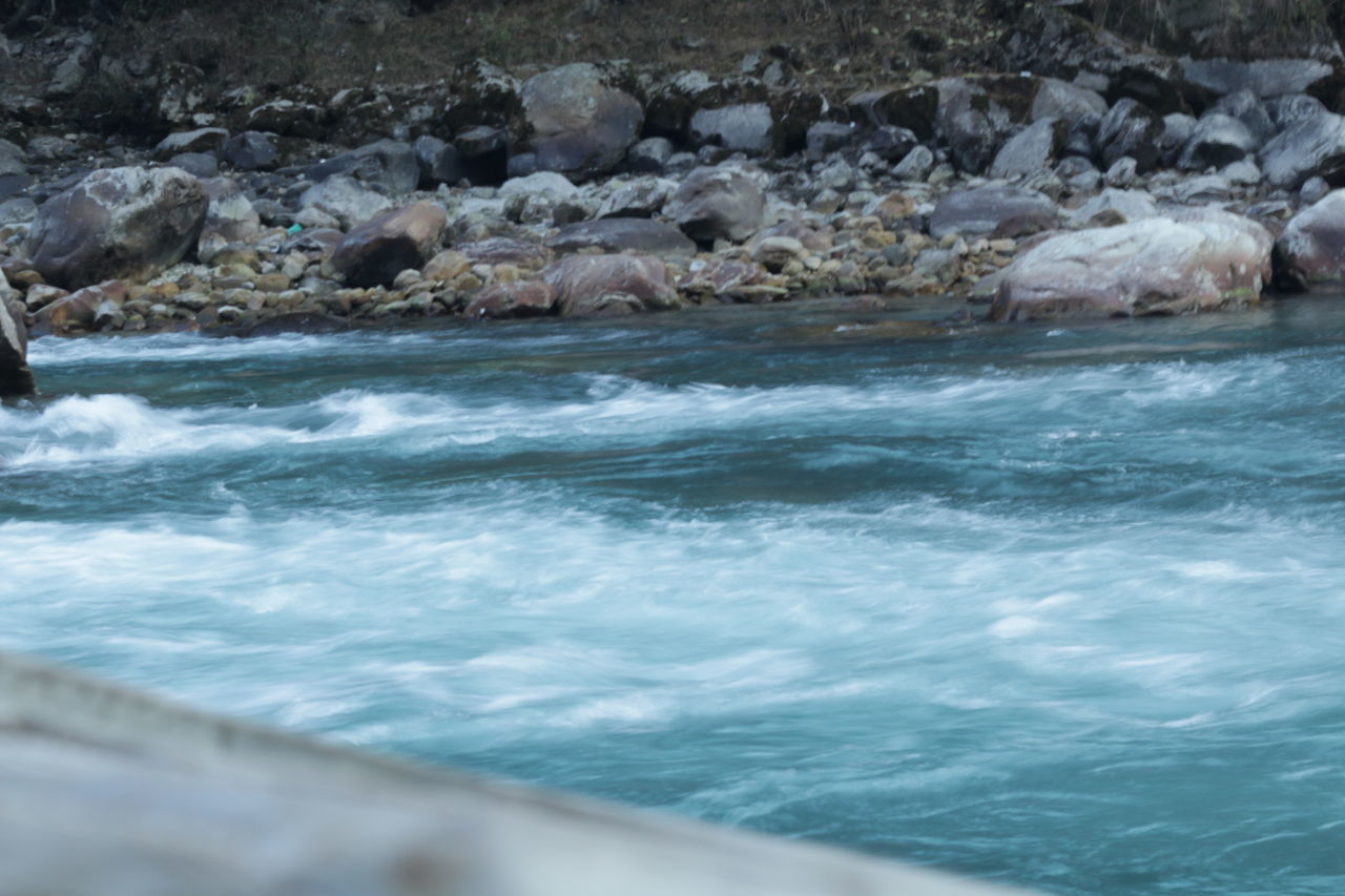 water, no people, nature, rock - object, beauty in nature, sea, outdoors, day, animal themes, mammal