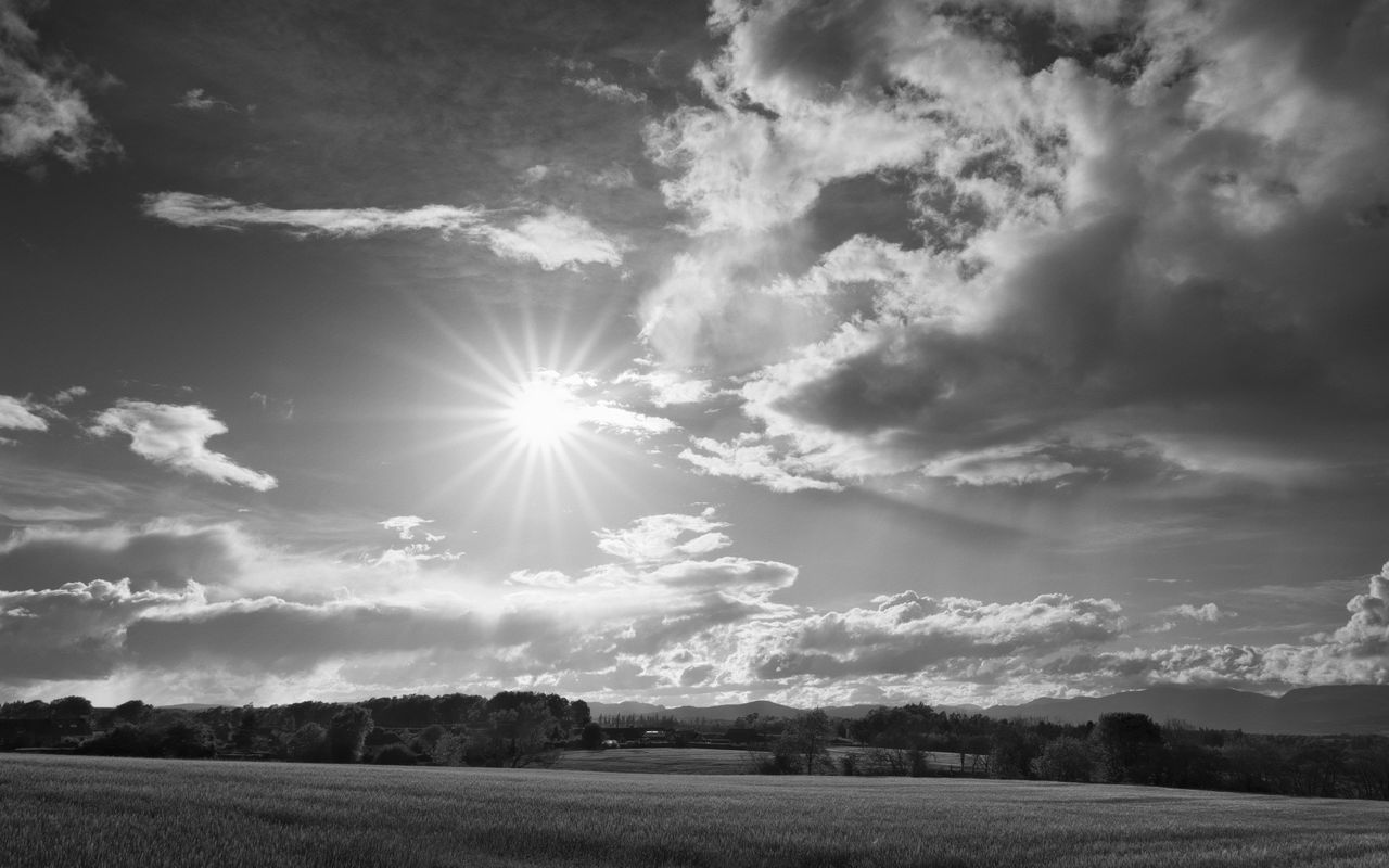 Undulating Fields - not bad for walking the dog, testing the pentax 15-30mm f/2.8. Yay for starburst lens-flare too. Beauty In Nature Black And White Blackandwhite Cloud Cloud - Sky Field Idyllic Lens Flare Light Light And Shadow Nature PENTAX K-1 Perthshire Scotland Sky Sky And Clouds Starburst Sun Sunlight Tranquil Scene Tranquility
