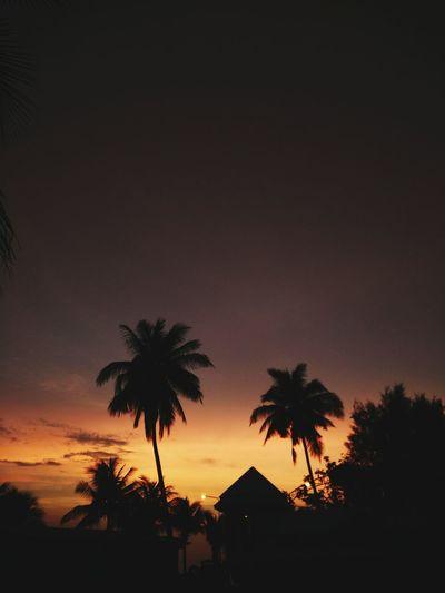 Violet By Motorola Bangsaen Beach Chonburi ,Thailand keep calm and get high.