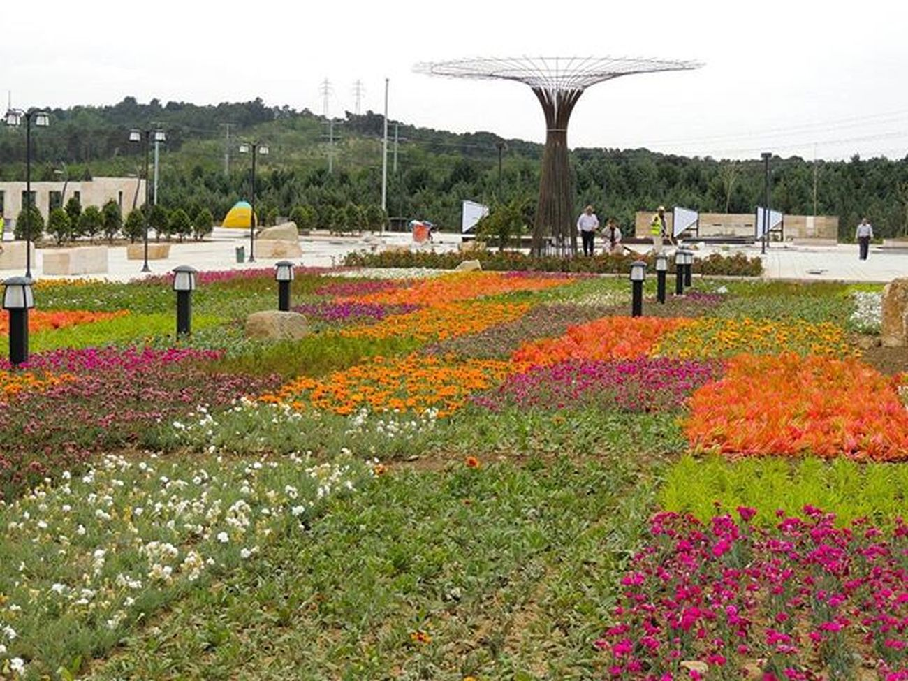 Lakeshore landscape of the Chitgarlake, the flower carpet, West part of the project. Last spring It was a ceremony of colors... Landscape architects: Morteza Adib, Maryam Yousefi @mymyousefi Photo by: mohammad Sharifi Year:2011-2014 Project Landscapeoffice Landscape ARCHITECT Konsept Concept Landscape ARCHITECT Landscapedesign Landscapearchitecturelife LandscapeArchitecture  Landscaper Landscapelovers Landscapeanddesign Landscaping Greenscape Urbanspaces Beauitfulgarden Peaple Gardens Chitgar Chitgarlake Iran Flowers Flower colors