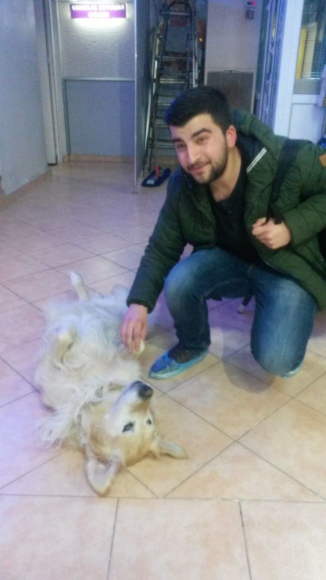 Hanimisde hanimiss :))Cute Pets Faces Of EyeEm Workout Dog Love
