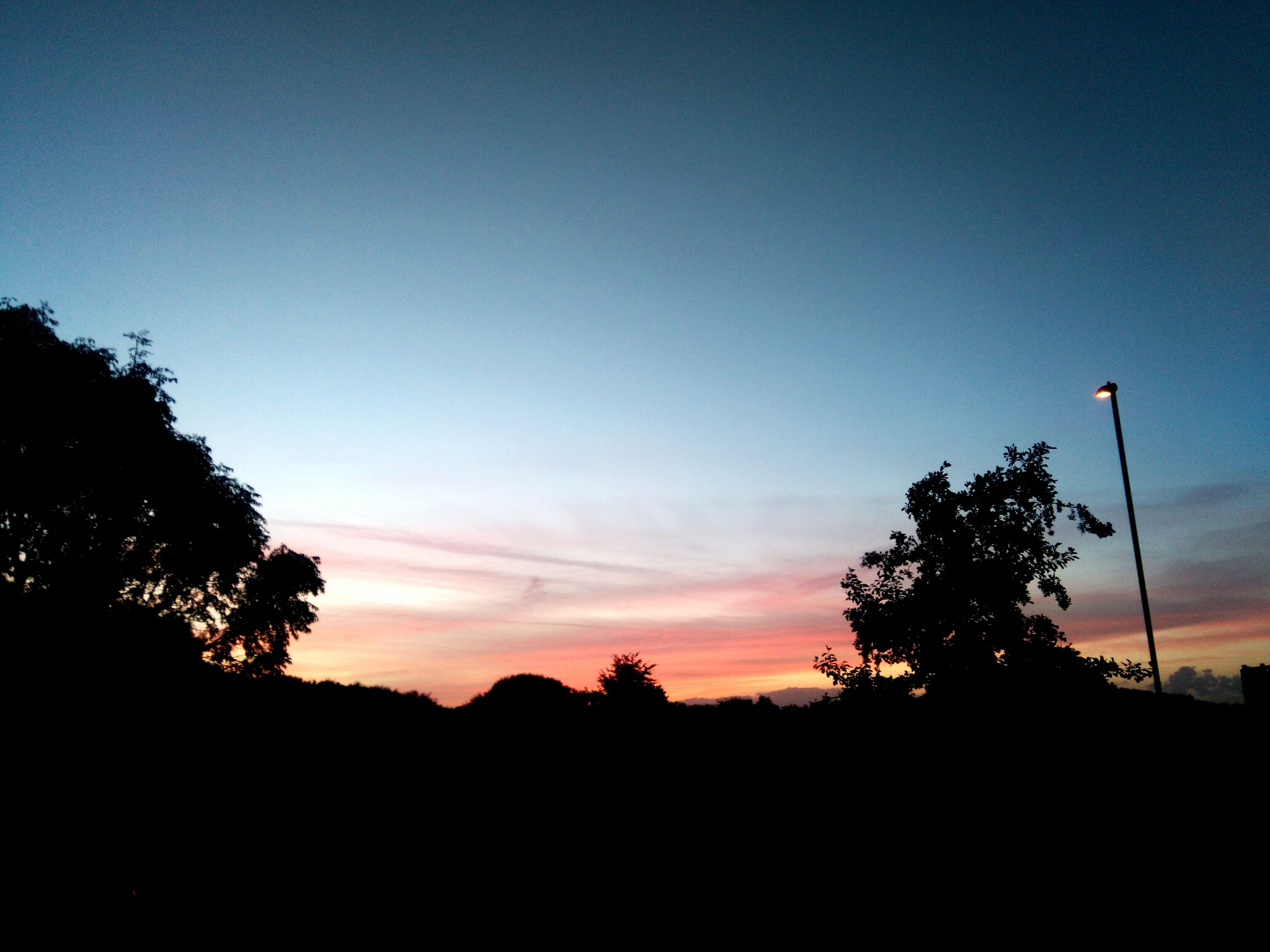 silhouette, tree, sunset, tranquil scene, scenics, tranquility, outline, landscape, copy space, beauty in nature, dark, sky, nature, calm, remote, solitude, outdoors, growth, non-urban scene, cloud, majestic, no people