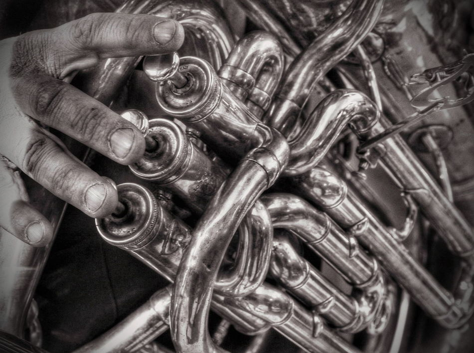Close-up Detail Brass Instruments Musical Instrument Wind Instruments Close Up Playing Music Fingers Monochrome Photography