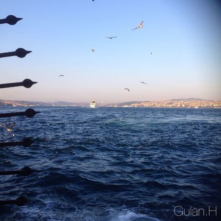 Allah Seaside Birds Flying Waves, Ocean, Nature Nature Beautiful Popular Photos Photography Clouds And Sky