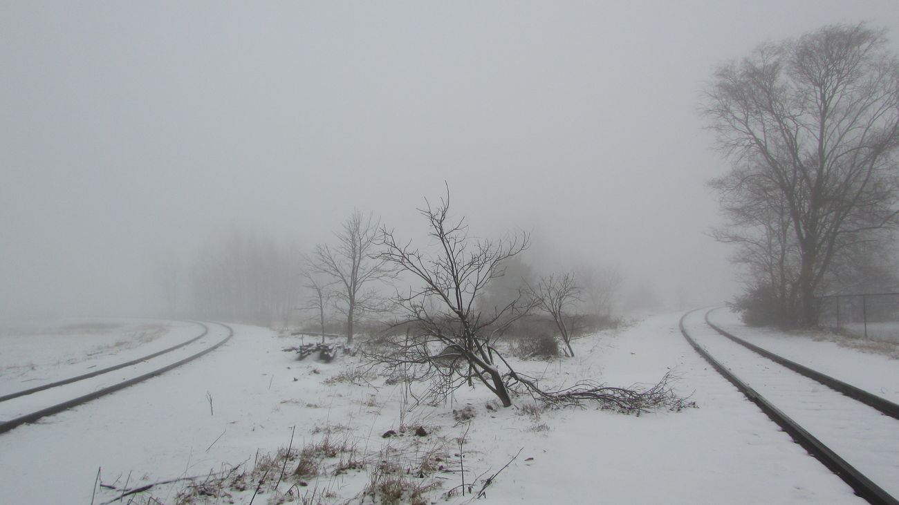 Foggy Morning All Alone Down The Tracks Which Way To Go? Cold Temperature Winter Landscape My Neighborhood Cadillac Michigan