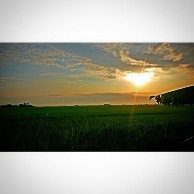 Morningmalaysia Wakeup