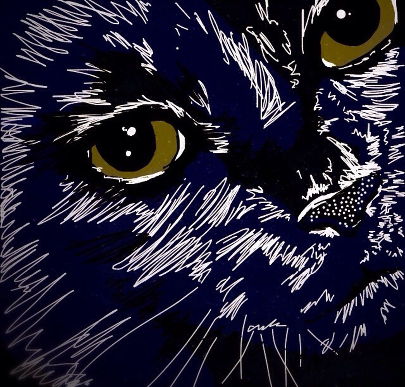 Another pic of my cat, sorry but she's a great mews! 😁 Spooky One Animal No People Night Close-up Concentric Scientific Experiment Astronomy Outdoors Star - Space Abstract Art Digital Art Digital Painting Cat Black Blue Eye