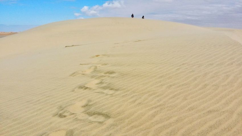 path Landscape Sand Sand Dune Beach FootPrint Desert Landscape Nature Day Sky Outdoors Animal Themes Scenics Beauty In Nature One Person Mammal Sea Arid Climate People Wave