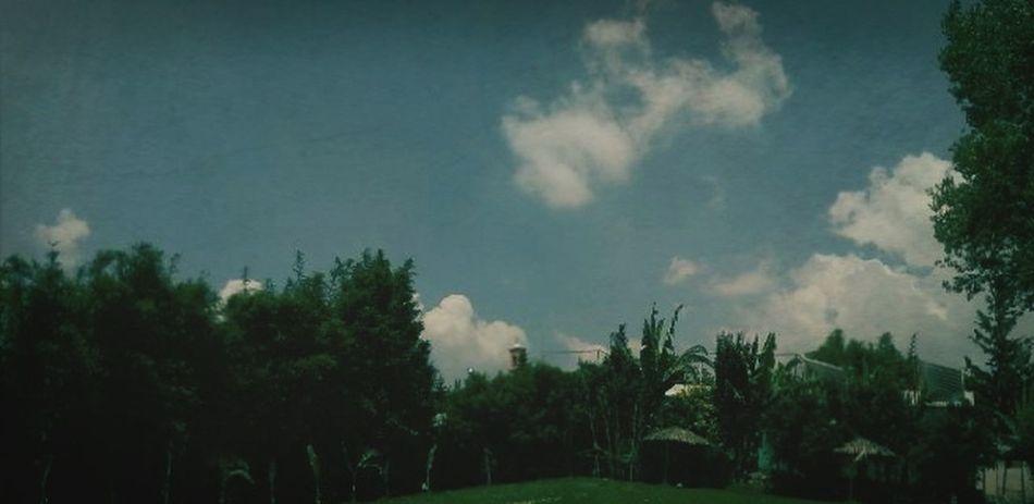 Cielo de Texcoco por la tarde. Es muy precioso ahí. Amo sin duda alguna este lugar Traveling Hi! Enjoying Life Relaxing