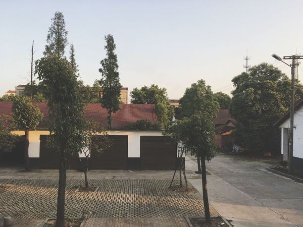 Tree No People Outdoors Built Structure Clear Sky Architecture Building Exterior Roof