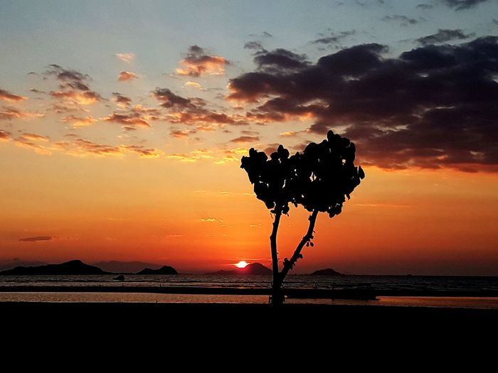 EyeEm Selects Sunset Beach Sky Tree Silhouette Beauty In Nature Nature Tranquility Outdoors No People Scenics Cloud - Sky Sea Mountain Landscape Water Day