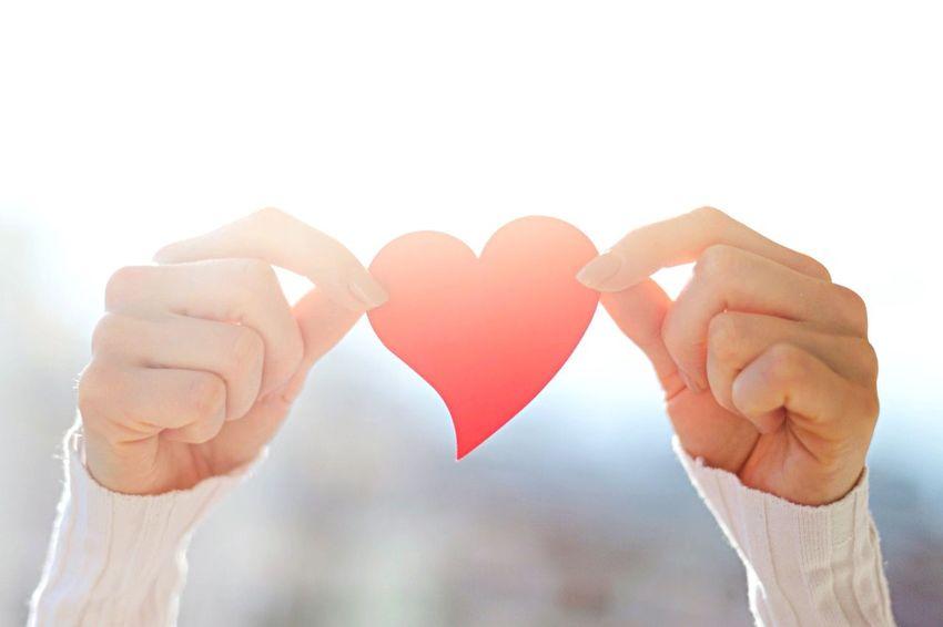 Love Heart Shape Human Hand Human Body Part Valentine's Day - Holiday Romance Holding