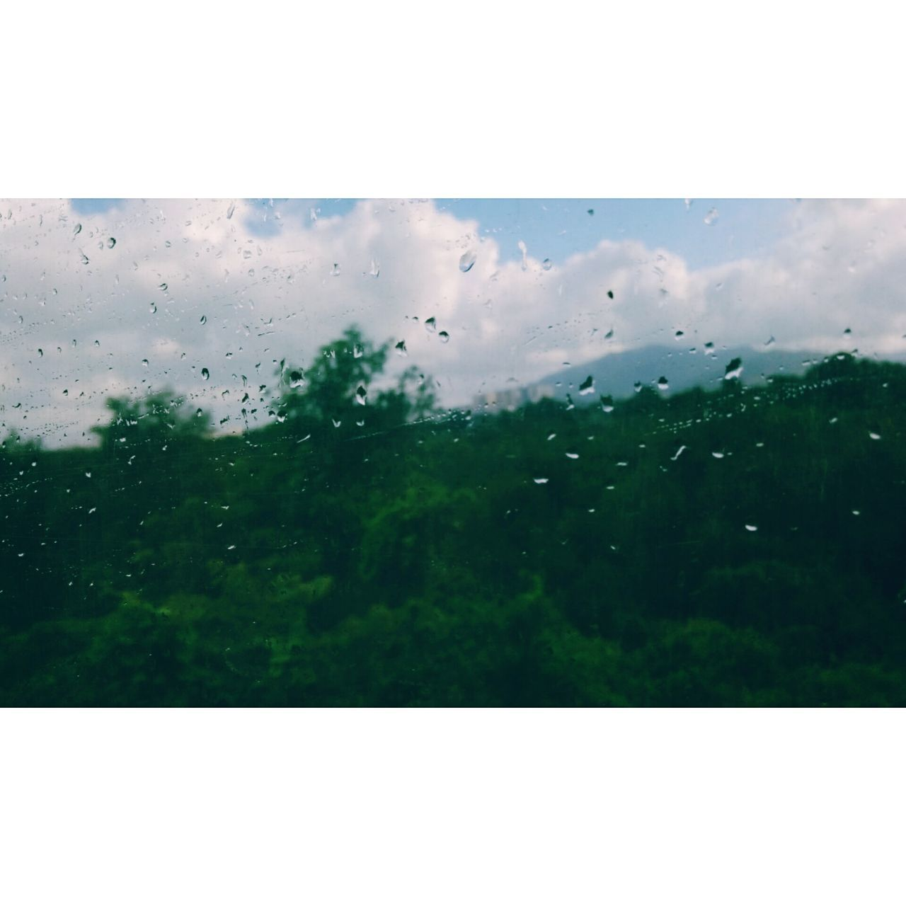 transparent, window, wet, rain, water, glass - material, drop, no people, raindrop, nature, day, close-up, condensation, indoors, sky, full frame, backgrounds, beauty in nature, freshness, airplane wing