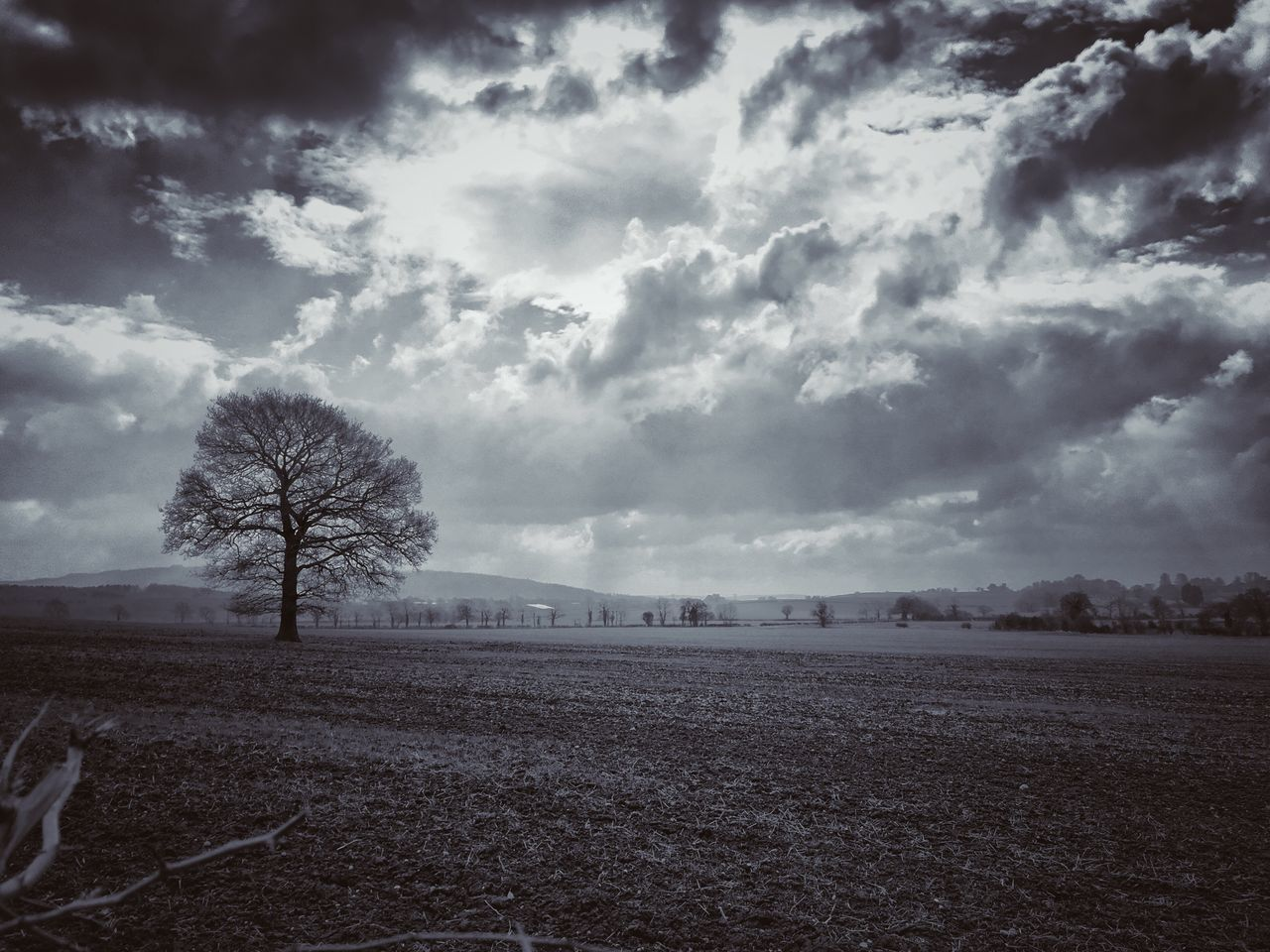 Fantastic opportunity to capture this shot while the sun was trying to pierce through the clouds __________________________________________________ Follow me on: www.facebook.com/jgphotographyofficial www.instagram.com/jg.photography.official __________________________________________________ #landscapephotography #landscape_captures #getoutdoors #takeahike #hikingadventures #hiking #countryside #fields #trees #nature #earthpix #moodygrams #travel #worcester #worcestershire #fantastic_earth #iPhoneography #Iphonephotography #iphone6splus #iphoneonly #Photography #Instagram #photooftheday #instadaily #apple #Explore #Adventure #nolenses #adobe #snapseed #snapshot by @jg.photography.official Sky Cloud - Sky Field Nature Tree Landscape Tranquility Rural Scene Scenics Beauty In Nature Agriculture Tranquil Scene No People Outdoors Growth Day Iphone6splus Apple IPhoneography