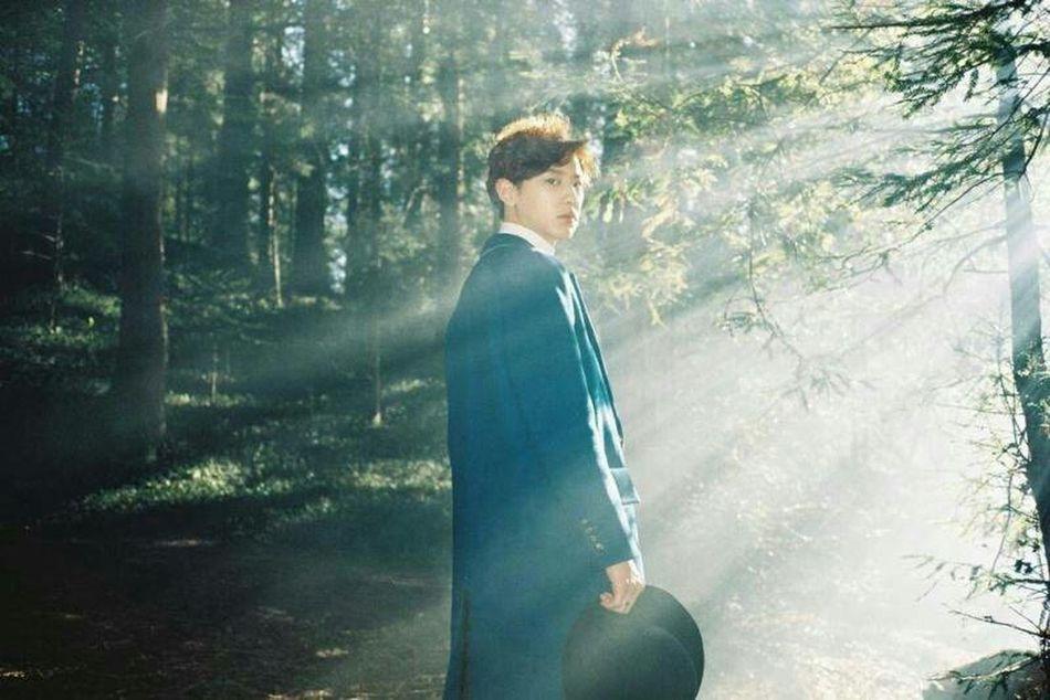 Exoluxion EXO Chanyeol Parkchanyeol Exodus Lovemeright