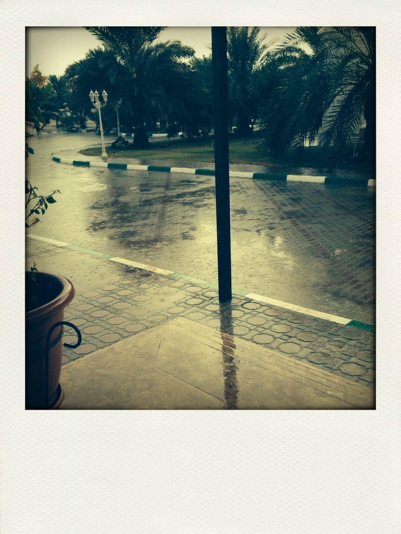 Alain... ☔️☔️☁️ Rain