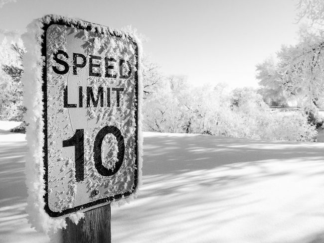 Speed limit 10 sign covered with ice crystals in winter. Black and white version. B & W  Black And White Blackandwhite Day Focus On Foreground Friends Frost Ice Crystals Information Information Sign No People Outdoors Road Sign Speed Limit 10 Speed Limit Sign Text Western Script Winter Black And White Photography Black And White Collection