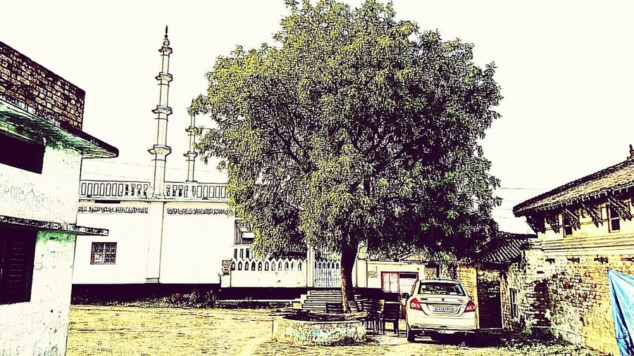 Old Tree Village Photography Well  Mosque Neem Tree Old House Incredible India Outdoors❤ Summer ☀ Life Is Beautiful Village House Beautiful ♥ EyeEm Best Shots EyeEm Best Edits