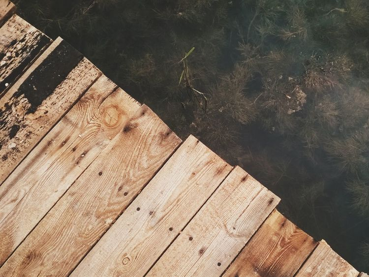 Wood & Water Supernormal