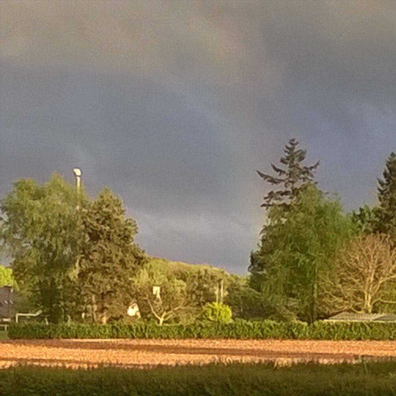 A fading Rainbow behind the Trees and the Field Un Arcenciel pâle derrière les Arbres et le Champ Taupont Morbihan Miamorbihan Bretagne Breizh Jaimelabretagne Fansdebretagne Arcobaleno  Nature Natura Naturelovers Naturegram Nuages Clouds Instagram