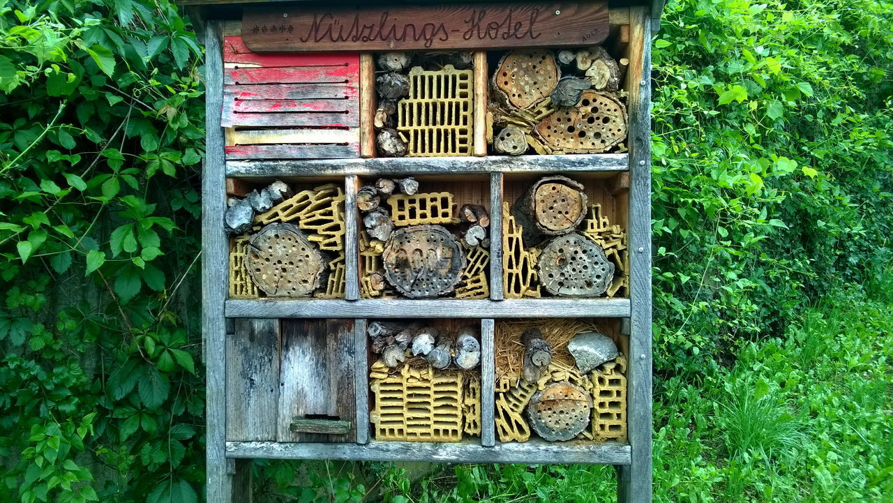 bee hotel Animal Hotel Architecture Bee Hotel Building Exterior Built Structure Day Nature No People Outdoors Plant Wood - Material