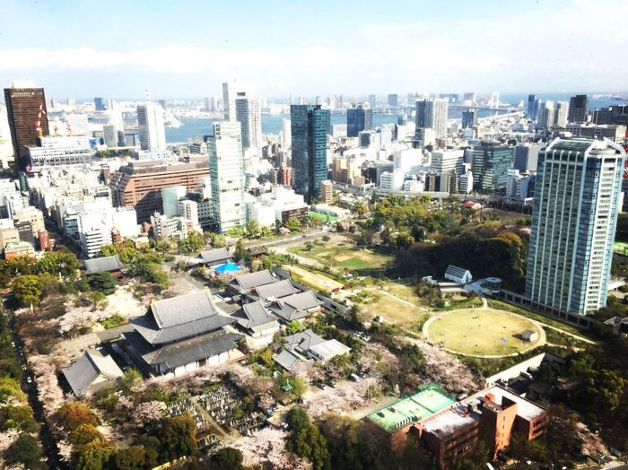 Architecture City Cityscape Skyscraper Building Exterior Built Structure High Angle View Crowded Aerial View Day Outdoors Growth Modern Tree Sky People