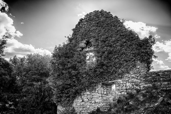 Old Ruin Dvigrad Hrvatska Architecture Urbex Blackandwhite Abandoned Bw_collection Urbexphotography Ruined Istria Nsnfotografie Castle History Ancient Beauty Of Decay Black And White Streetphoto_bw Growth Nature