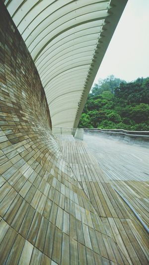 Henderson Waves Architecture Nature Urban Geometry Taking Photos