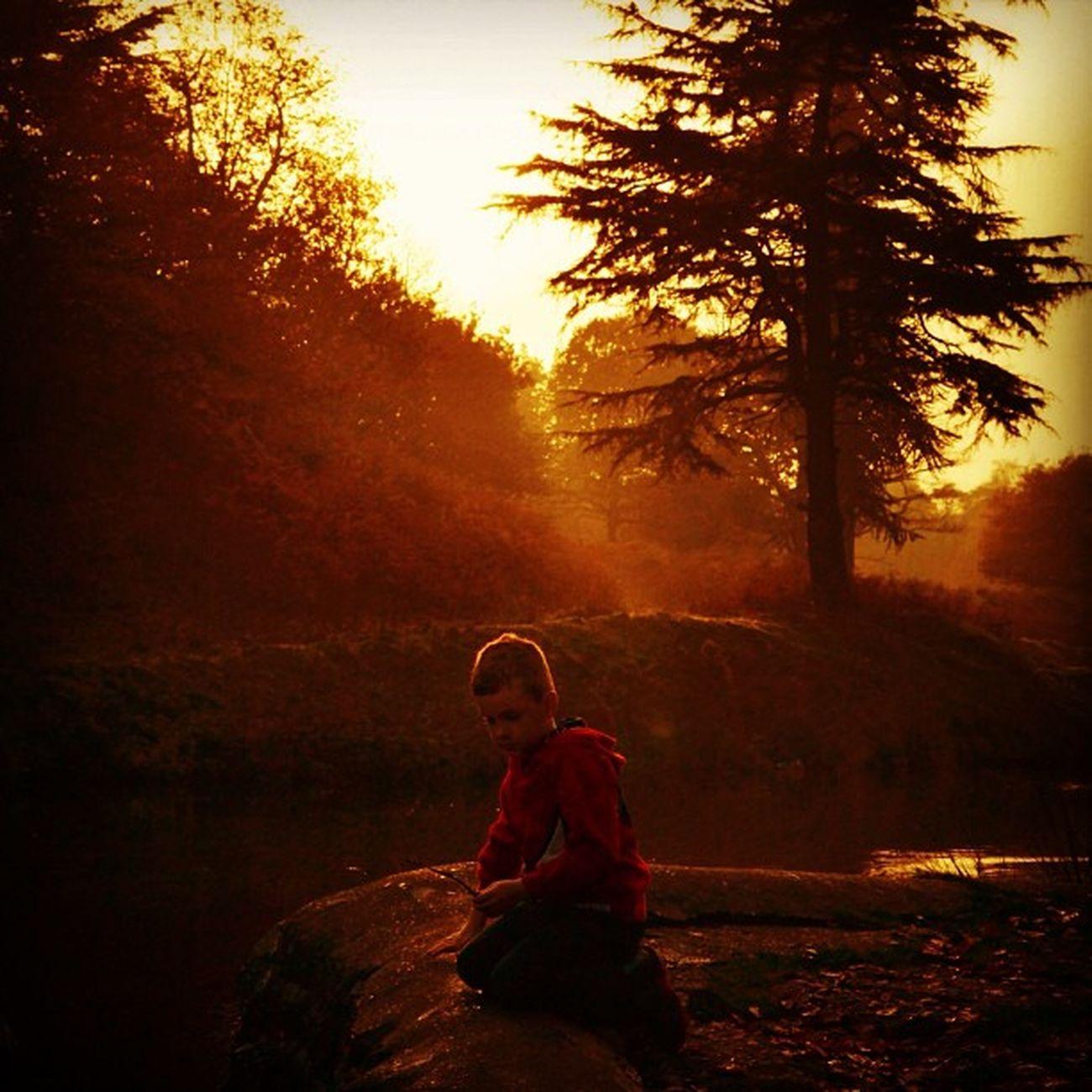 Boy. Bradgatepark Sunset Igsunset Instasunset iphonography nature instanature photo park