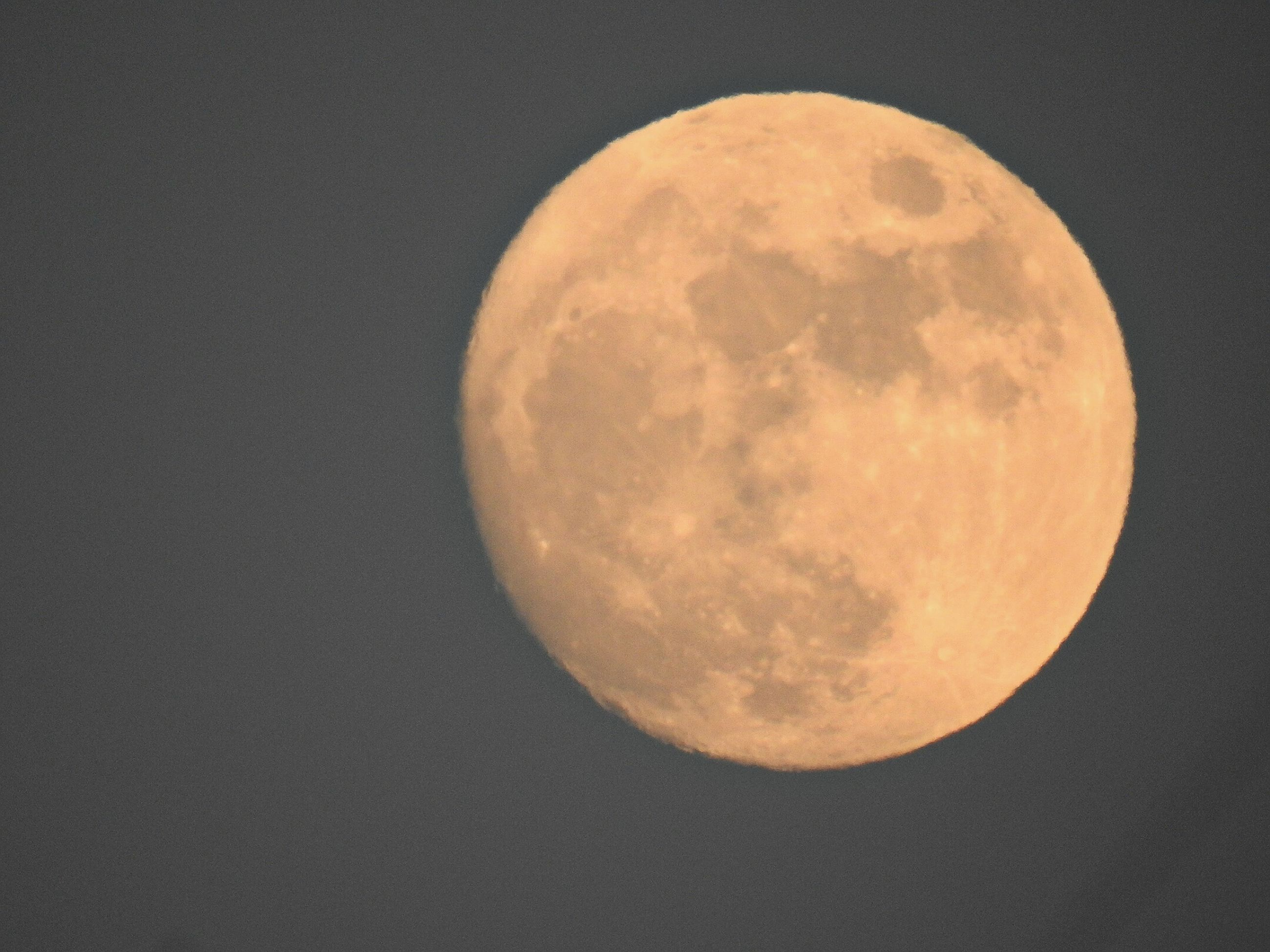 moon, astronomy, circle, sphere, full moon, planetary moon, night, moon surface, discovery, copy space, tranquility, beauty in nature, nature, space exploration, tranquil scene, scenics, no people, close-up, sky, exploration