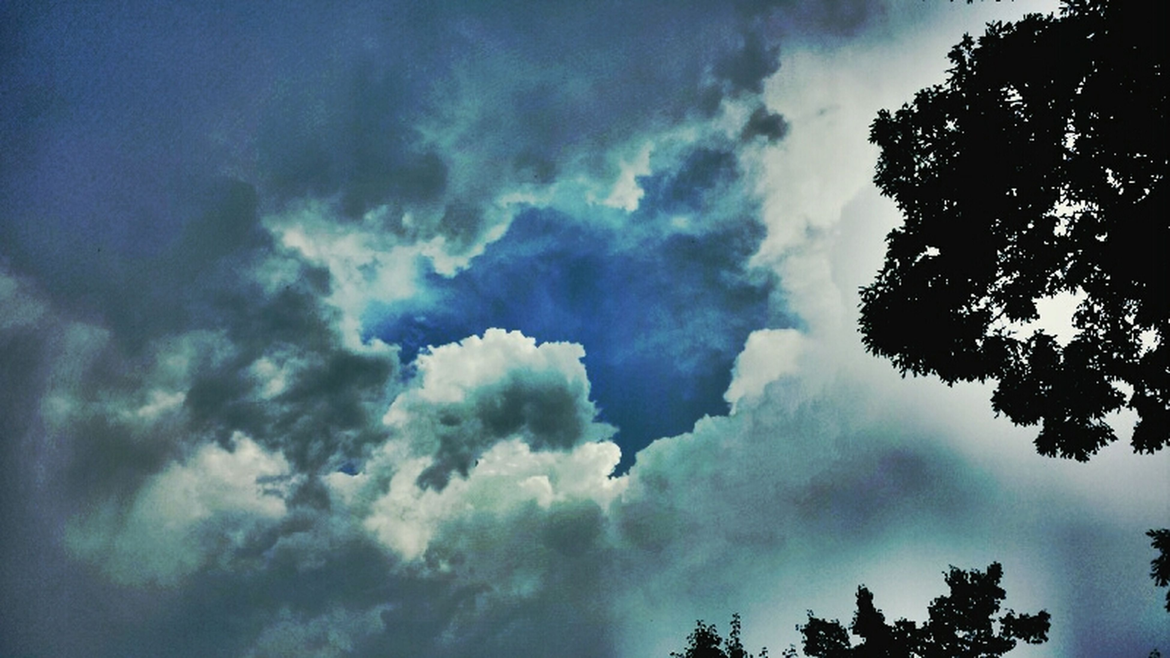 low angle view, sky, tree, cloud - sky, cloudy, beauty in nature, tranquility, silhouette, nature, scenics, cloud, tranquil scene, high section, cloudscape, weather, growth, treetop, blue, overcast, outdoors