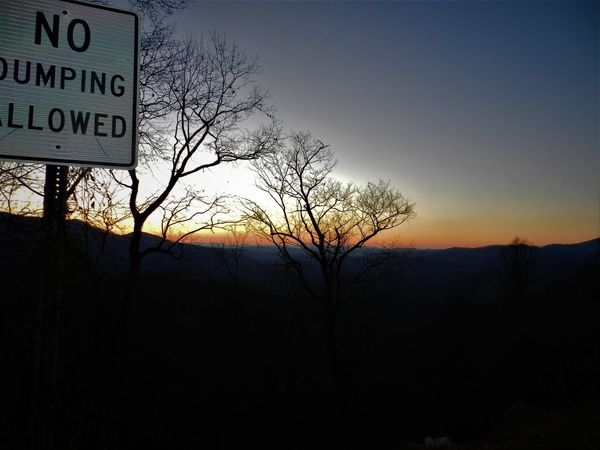 Beautiful Clear Sky Morning Morning Sky Bare Tree Beauty In Nature Day Guidance Nature No Dumping No People Outdoors Road Sign Sky Sunrise Text Tree