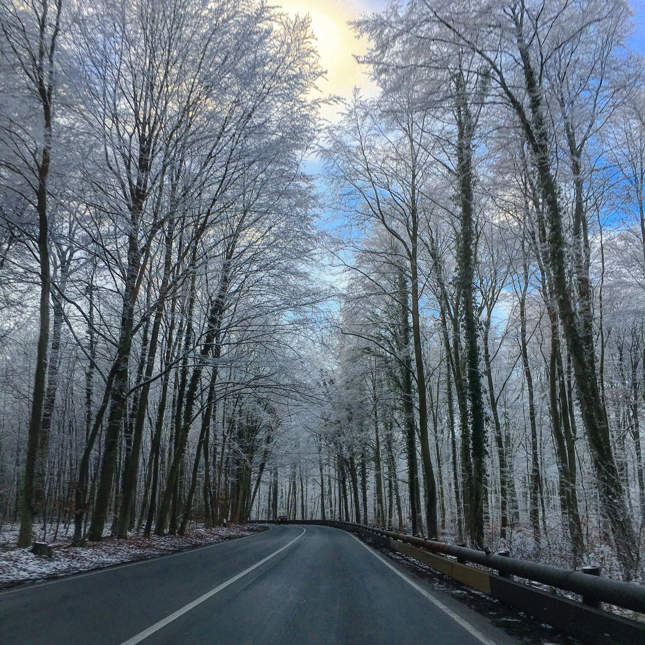 bare tree, road, the way forward, tree, transportation, nature, winter, snow, tranquility, cold temperature, tranquil scene, day, no people, branch, outdoors, beauty in nature, scenics, landscape, sky