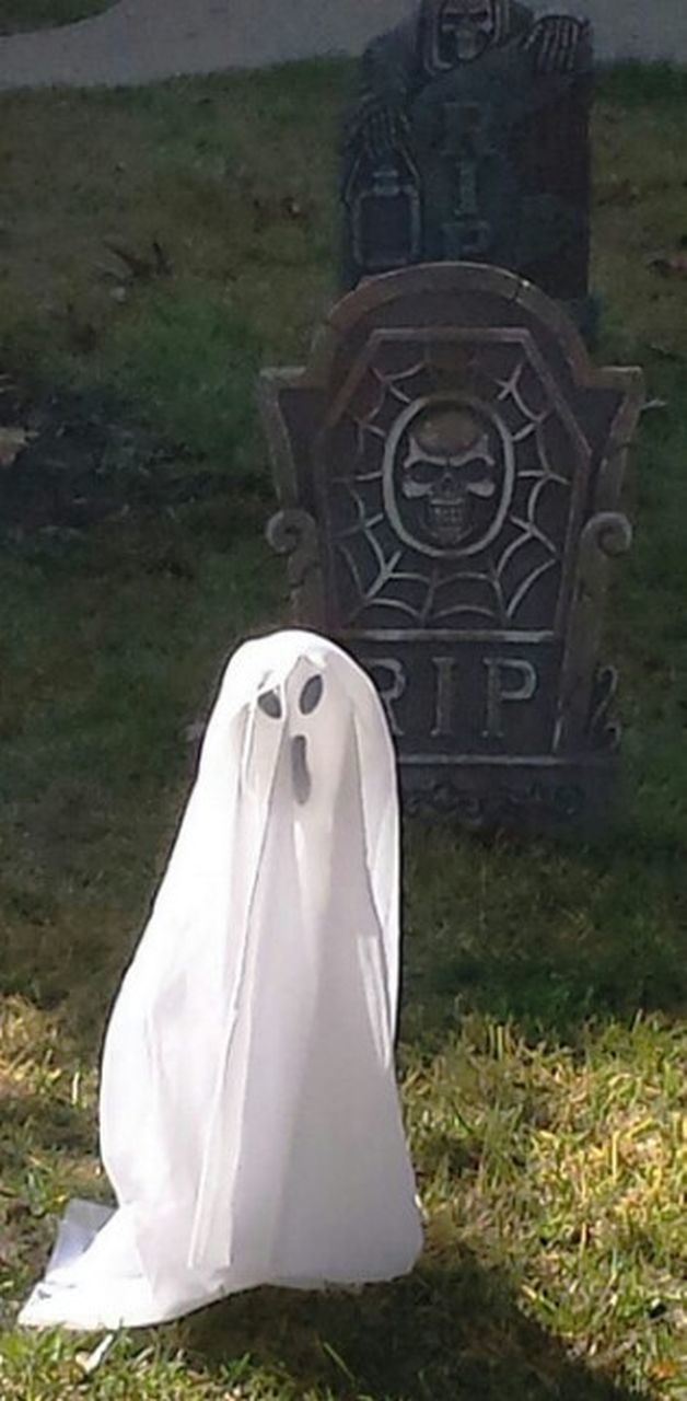 spooky, wedding, horror, wedding dress, outdoors, day, no people, grave, halloween, grass