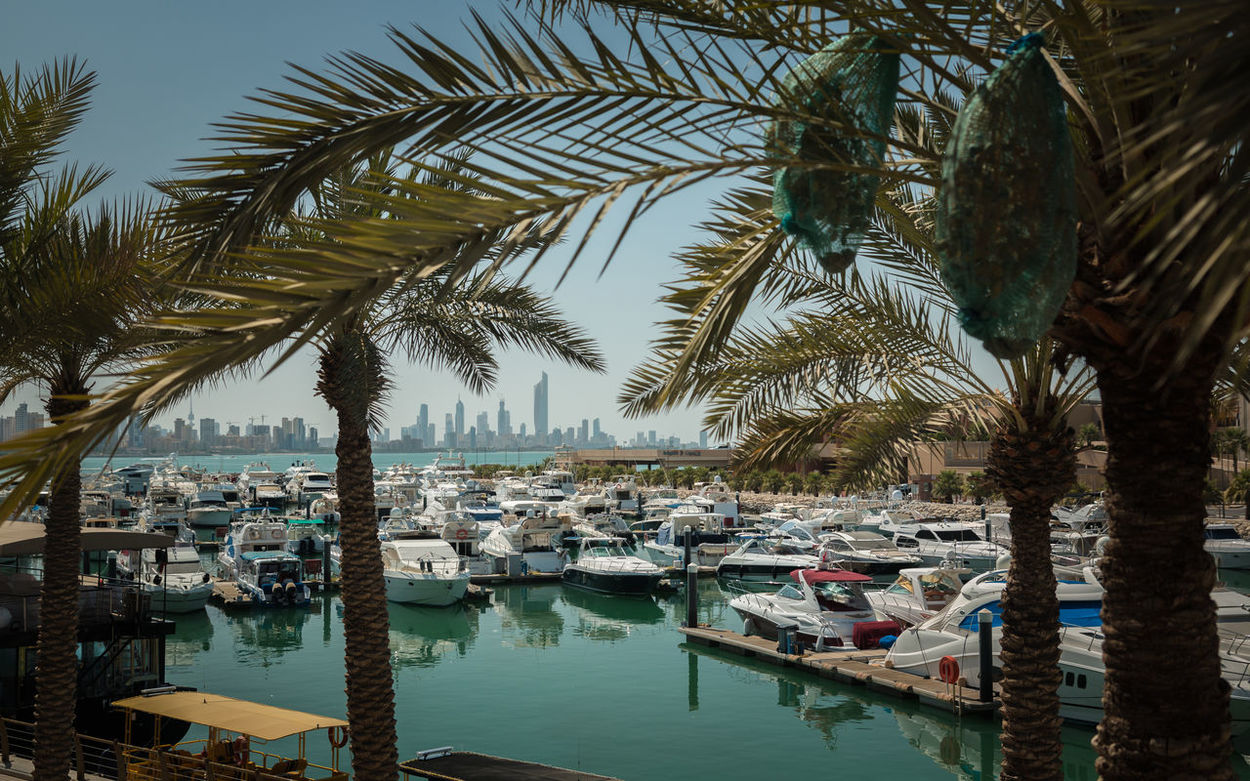 Kuwait-City Beautiful Boat City City View  Cityscape Kuwait Kuwait City Kuwaitcity Marina No People Outdoors Palm Tree Tranquil Scene Tranquility Travel Destinations Live For The Story BYOPaper!
