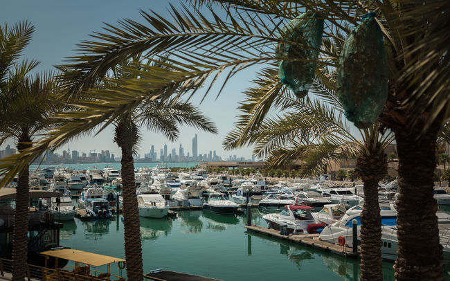 Kuwait-City Beautiful Boat City City View  Cityscape Kuwait Kuwait City Kuwaitcity Marina No People Outdoors Palm Tree Tranquil Scene Tranquility Travel Destinations