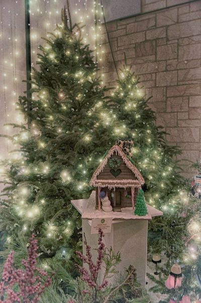 Gingerbread House Christmas Lights Cleveland Botanical Gardenn